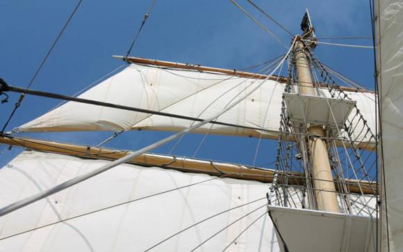 Tallship Pelican